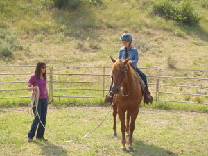Lesson in the roundpen